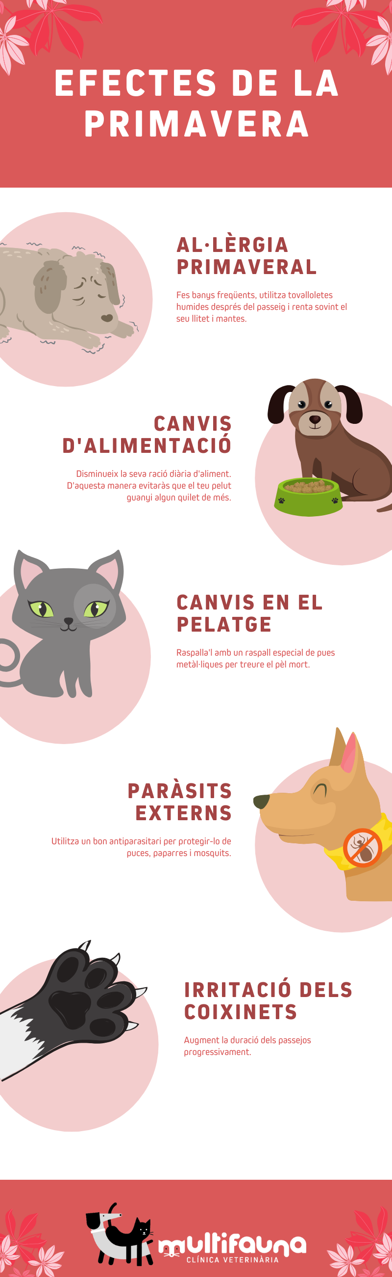 efectes de la primavera als animals veterinari girona