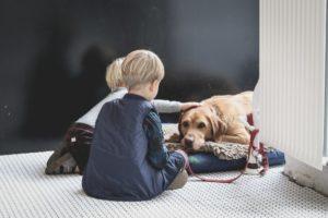 consells veterinari girona, nens amb un gos